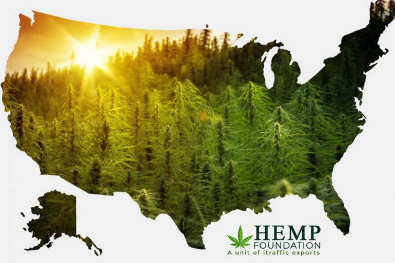 Why Regulation is the Biggest Hurdle for Hemp Industry in the US