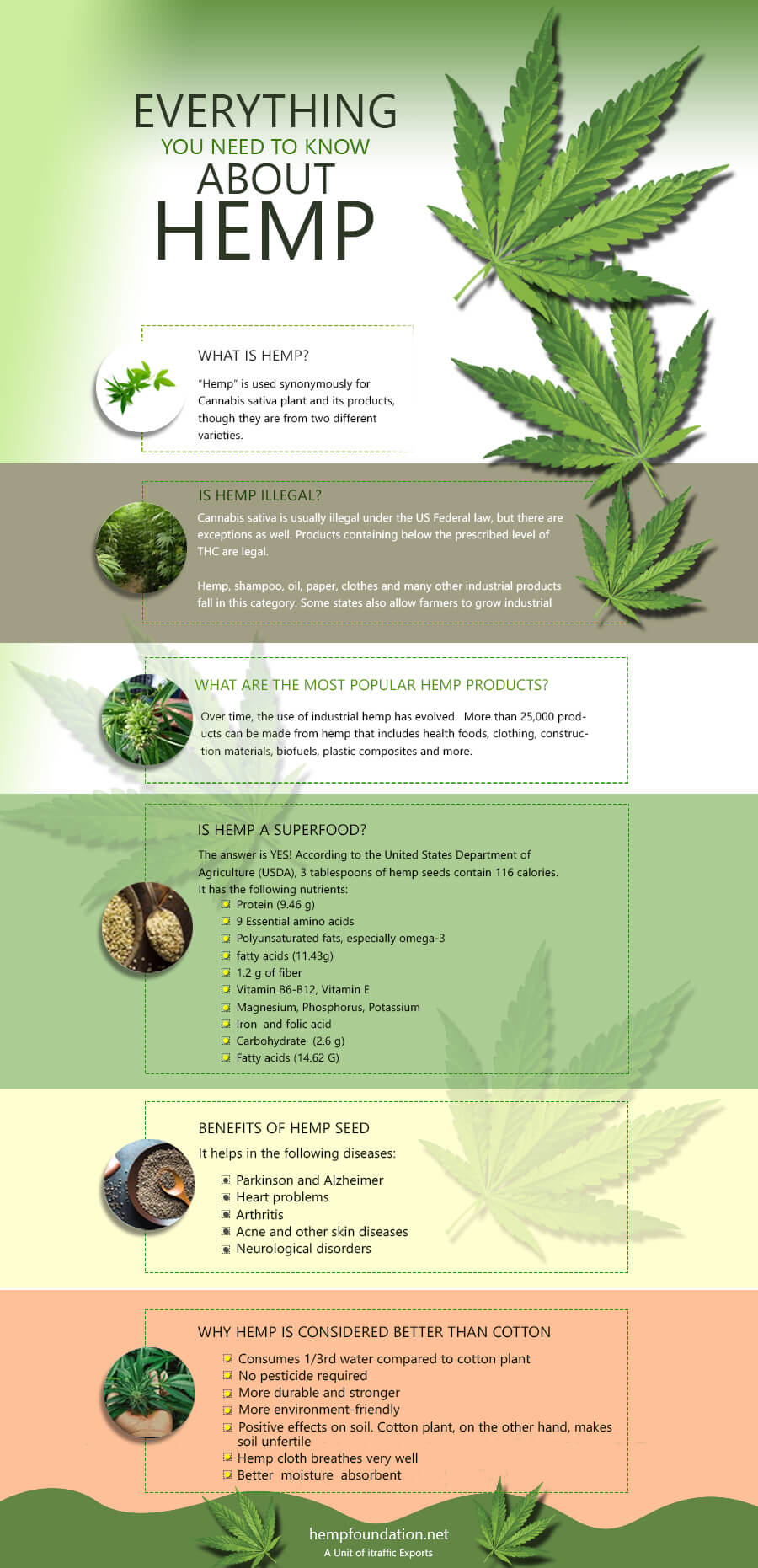Everything-about-Hemp-Infographics
