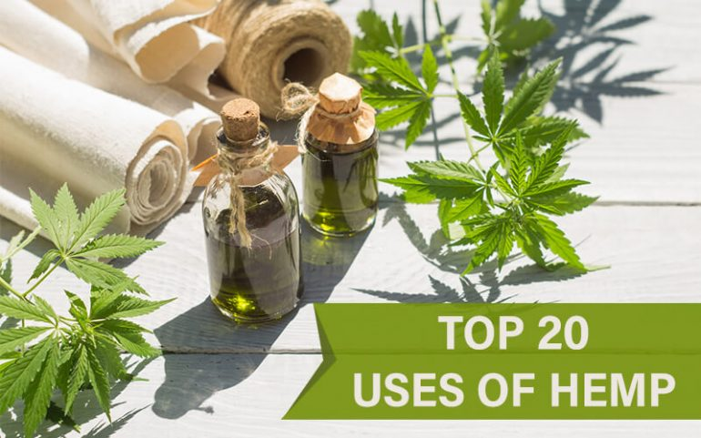 Top 20 Most Popular Uses Of Hemp Plant (In The US)