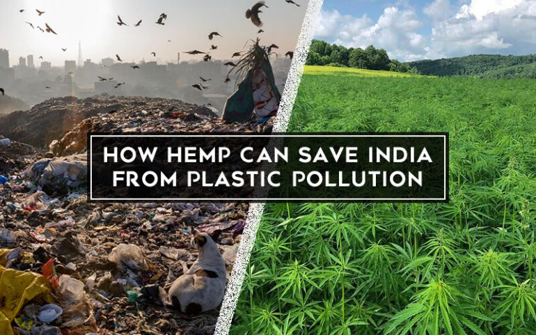 How Hemp Can Save India from Plastic Pollution