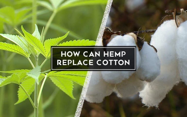 Can Hemp Replace Cotton