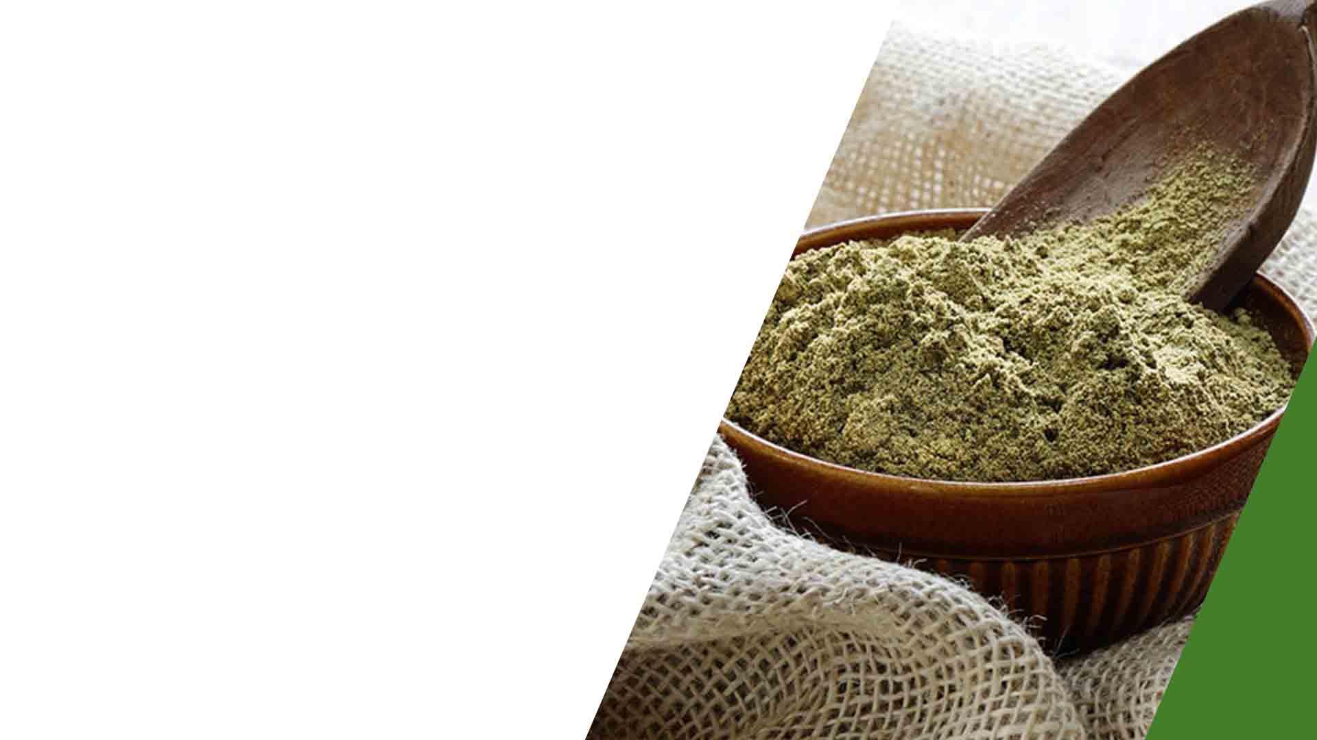 Bulk Hemp Protein Powder Wholesale