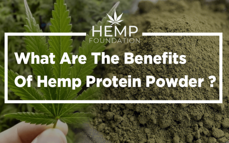 What Are The Benefits Of Hemp Protein Powder?