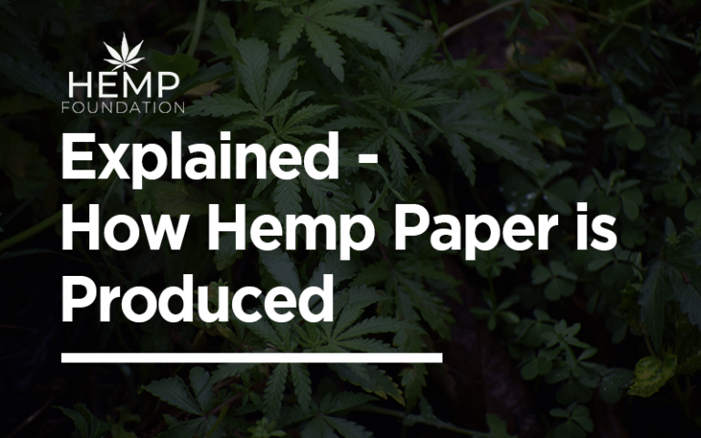 Explained – How Hemp Paper is Produced