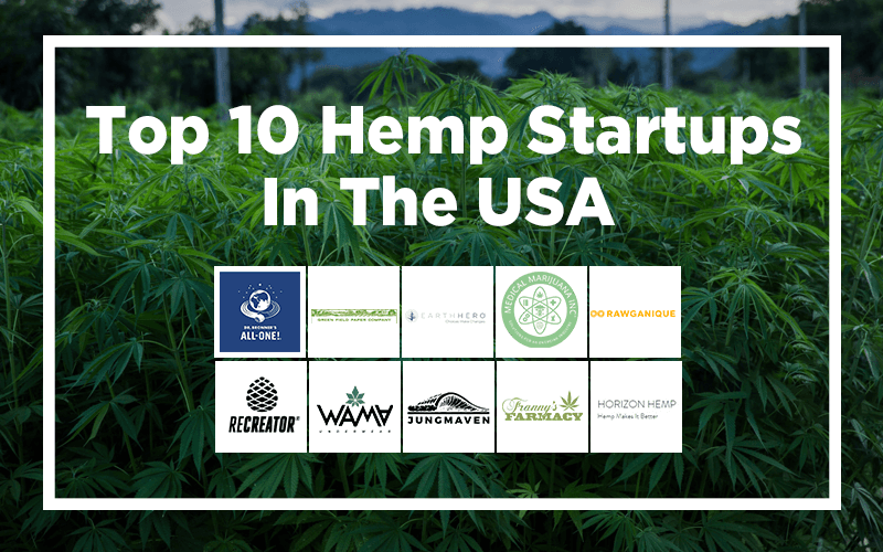 Top 10 Hemp Startups in the USA