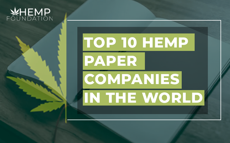 Top 10 Hemp Companies in the World for Paper Products