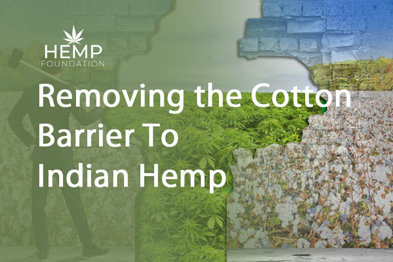 Removing the Cotton Barrier To Indian Hemp