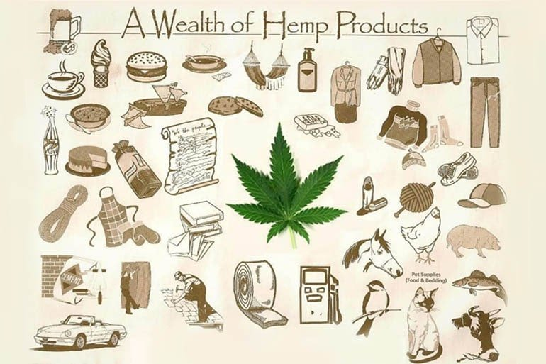 Top 50 Hemp Products You Can Get Online